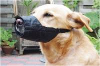 BEEZTEES Köpek Ağız Koruyucu Siyah No:8