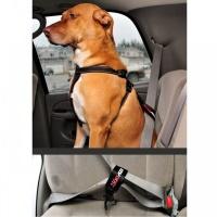 EZYDOG Car Restraint Araç İçi Köpek Emniyet Kemeri Siyah