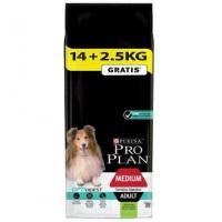 PRO PLAN Kuzu Etli Orta Irk Yetişkin Köpek Maması 14+2,5 KG