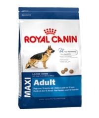ROYAL CANIN Shn Maxi Adult Büyük Irk Yetişkin Köpek Maması 15 KG