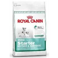 ROYAL CANIN Shn Starter Küçük Irk Anne&Yavru Köpek Maması 3 KG